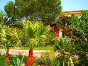 Finca Can Bril | Campos | Mallorca