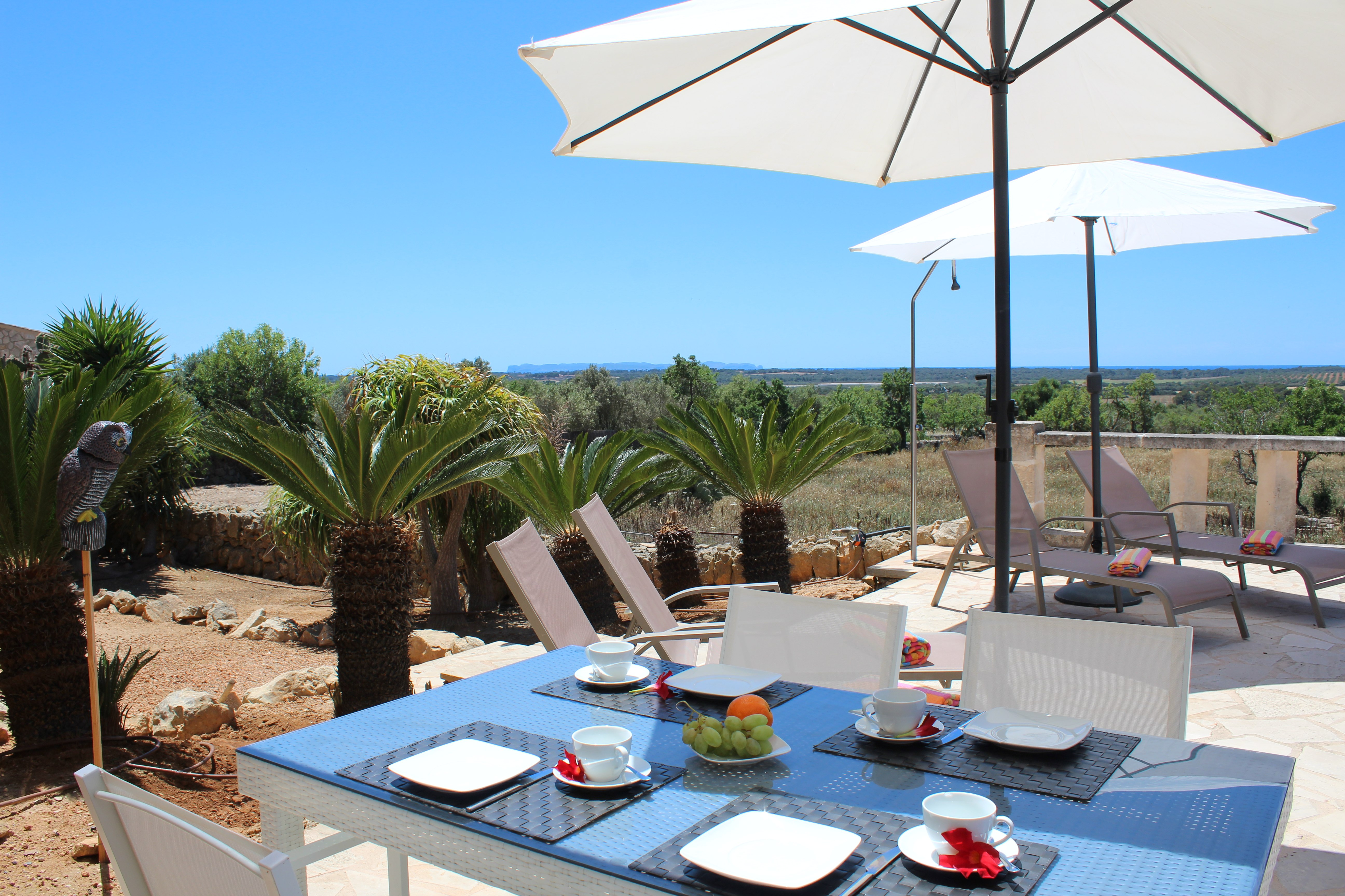 Finca Sa Marina | Ses Salines | Mallorca