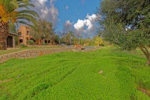 El Retiro Ses Salines | Der Garten im Winter mit grünem Klee